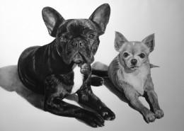 retrato-perros-encar02-1